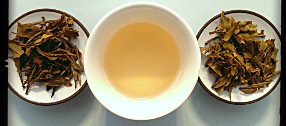 Tè verde Lelsa Lung Chee